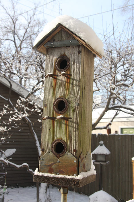 Fish and Birdhouses